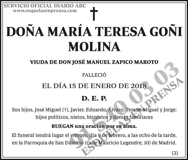 María Teresa Goñi Molina